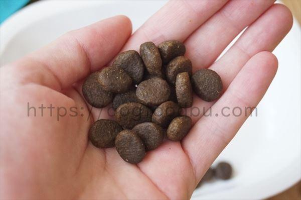 アカナ・パシフィカの粒のサイズ