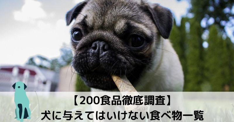 【全200項目一覧】素材別*犬に食べさせてはいけない食べ物