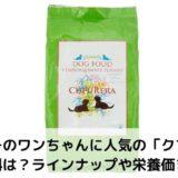 【ドッグフード】クプレラの辛口評価!口コミ&安全性&食いつき&価格は?