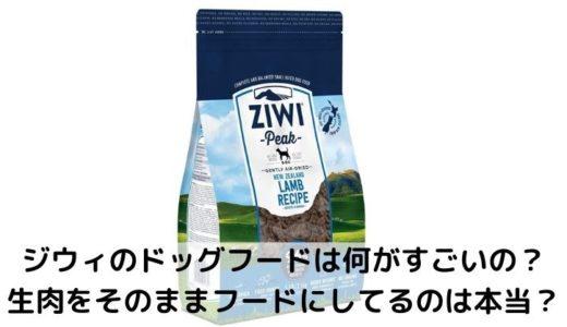【ジウィ】辛口評価!口コミ&安全性&食いつき&価格&ラインナップ